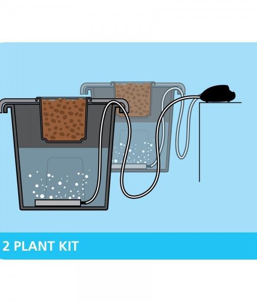2-plant-kit