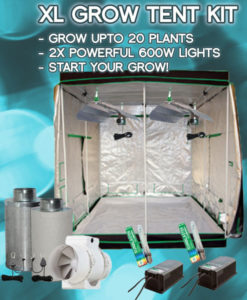 xl-grow-tent-kit & Complete Grow Tent Kits | Hydroponic Soil or Hydro Kits
