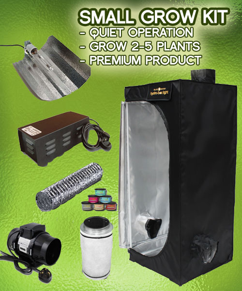 Whatu0027s in the small grow tent kit? & Small Grow Tent Kits - Indoor Hydroponic 250w Grow Tent Package