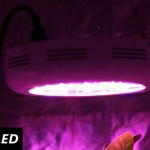 180w-led-grow-light-on