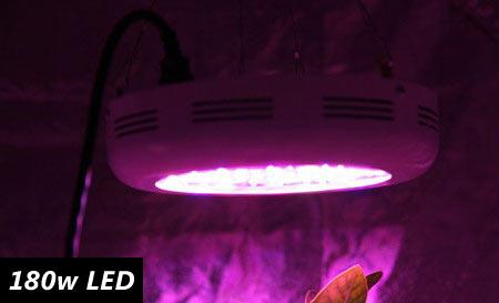 180w-led-grow-light-on