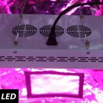 300w-led-grow-lights-on