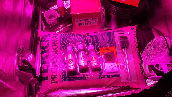 Premium black orchid grow tent. Optional soil kit extras & LED Grow Tent Kits - Complete LED Hydroponics Kit