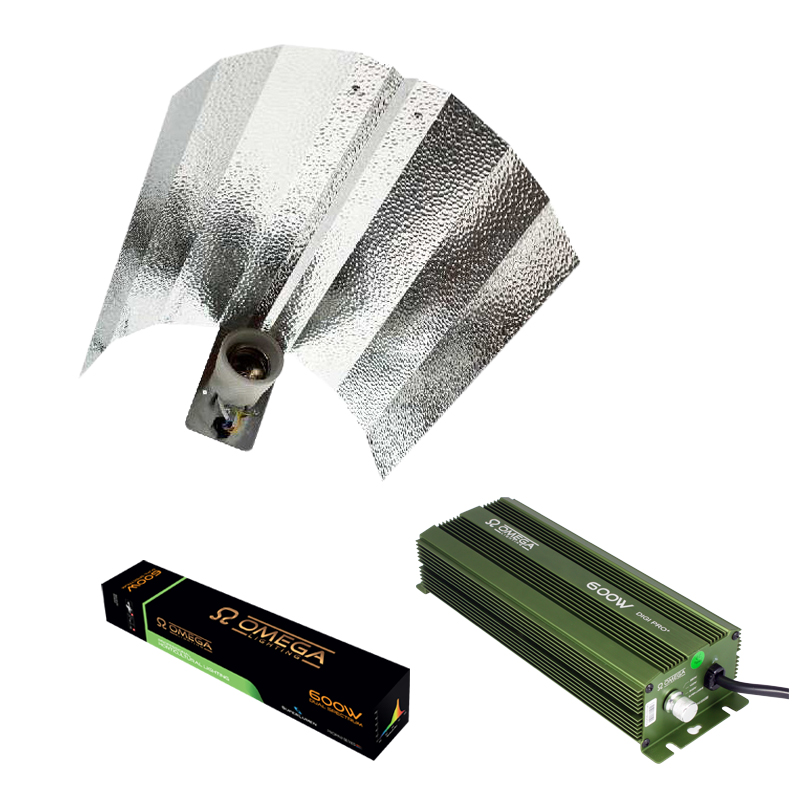 Eurowing 600W Digi-Pro Light Kit