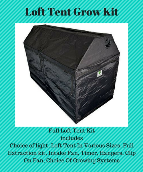 Complete Loft Tent Grow Kit Choice Of Led Or Hps Lights