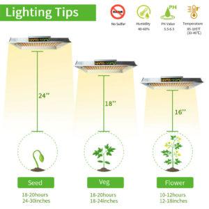 Lighting Height